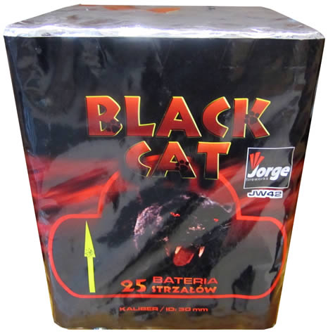 Jorge Black Cat