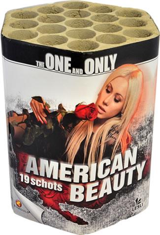 Lesli Fireworks American Beauty
