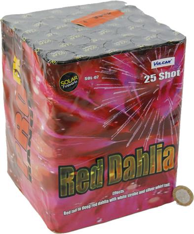 Vulcan Red Dahlia