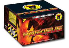 Black Cat Fireworks Pegasus Small
