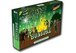Standard Fireworks Bonfire Selection Box Small