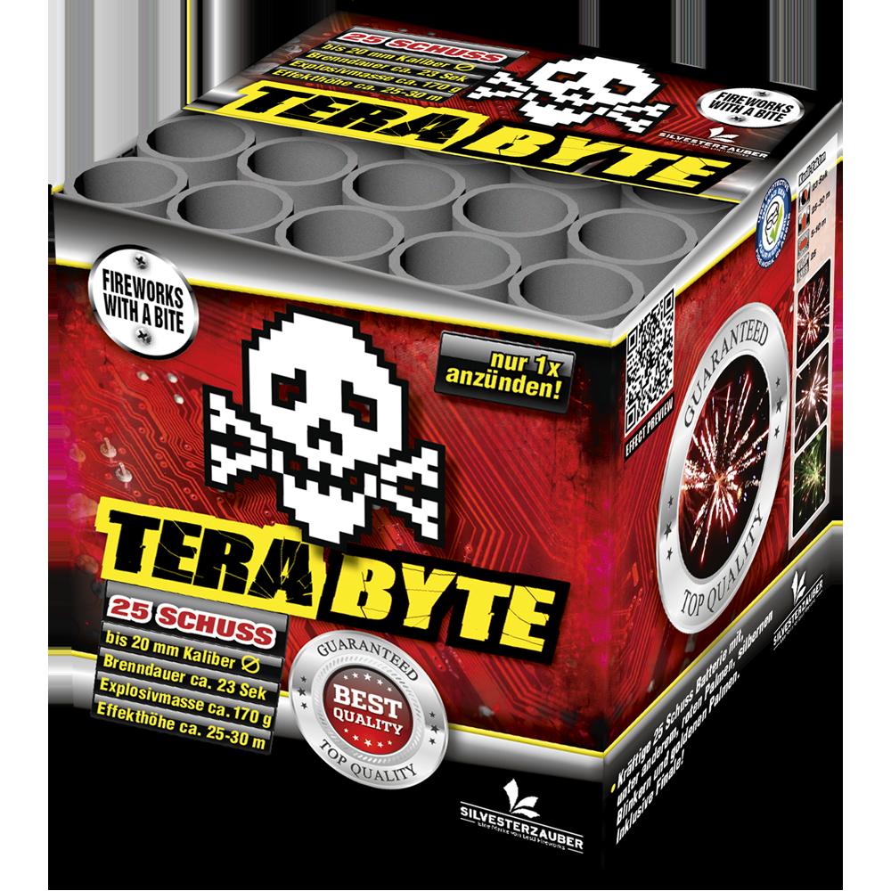 Terabyte by Lesli Fireworks