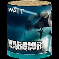 Warrior by Lesli Fireworks