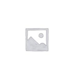 Single Ignition - SIB's Archive